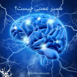مسیر عصبی